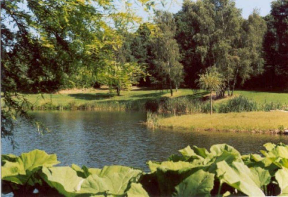 Le lac privé pour la pêche ou les baignades