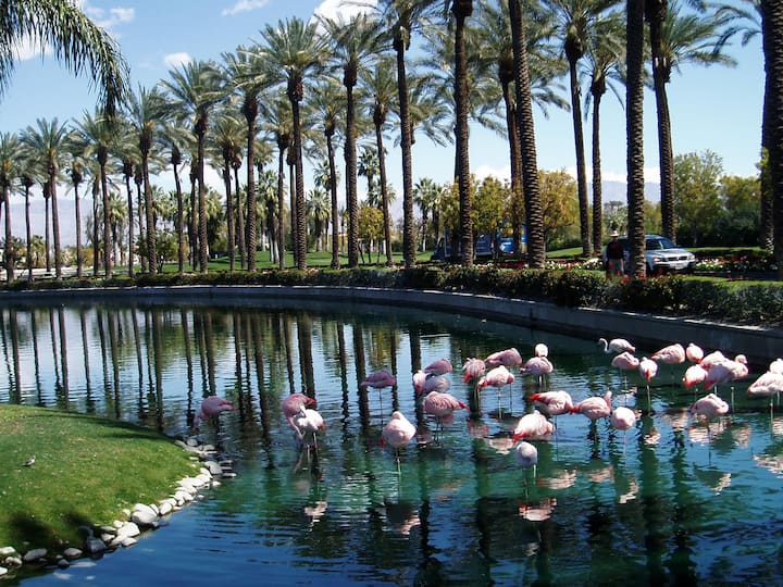 Coachella Marriott-DISCOUNTED: 2BR, Slp 8, 4/15-19