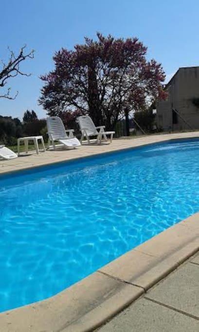 Grande piscine équipée