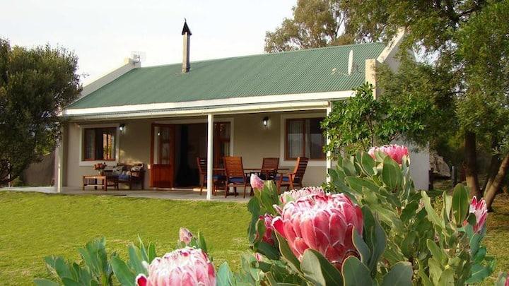 Wild Olive Cottage