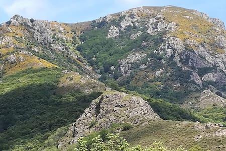 Découvrez l'Ardèche en camping