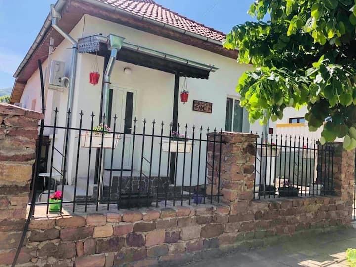 Самостоятелна къща с красиво озеленен двор.