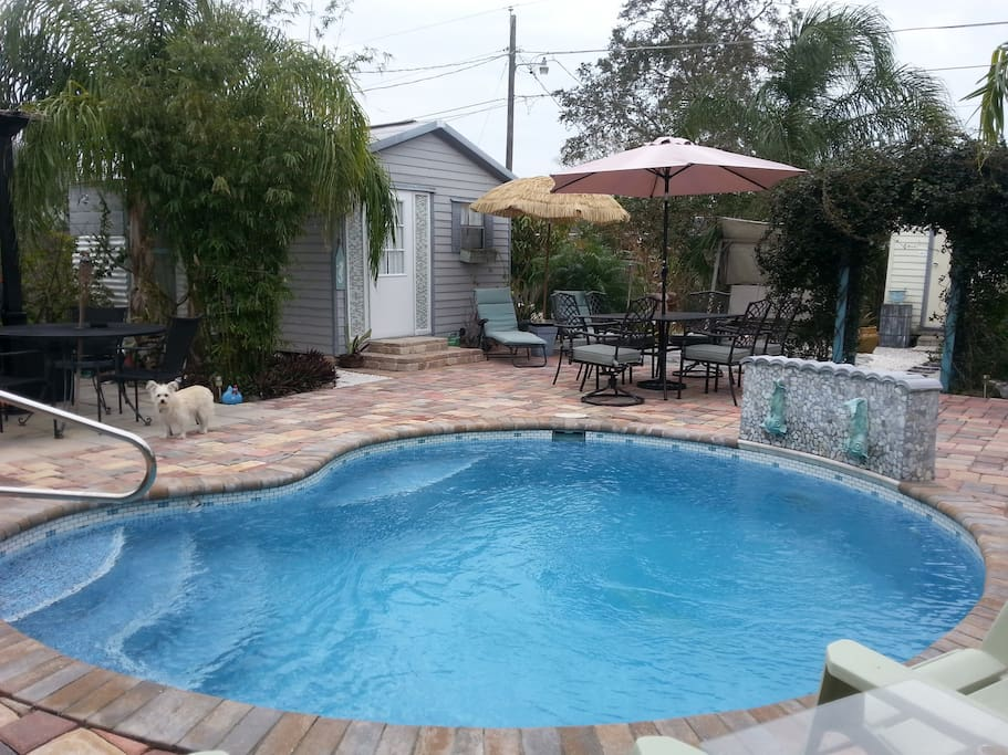 Private pool side space beach town in englewood florida for Pool showrooms sydney