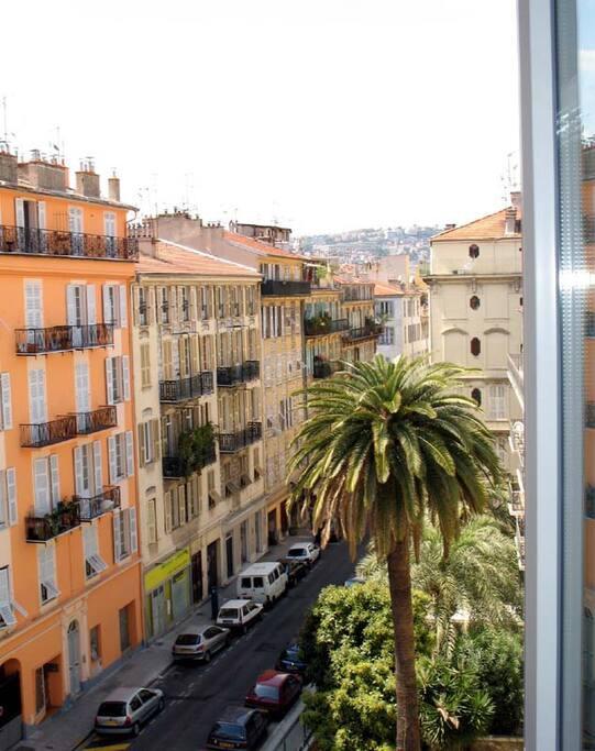 Vue rue et palmiers
