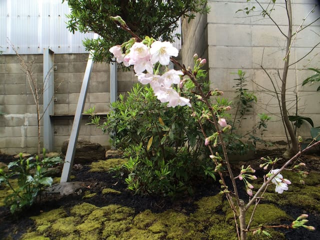 Quiet House with a Japanese Garden - Kobe - Apartamento