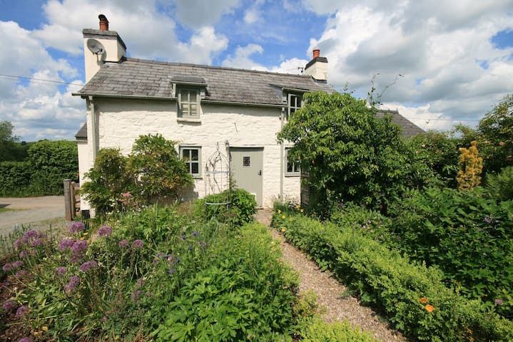 Traditional Airbnb homestay in the Welsh hills
