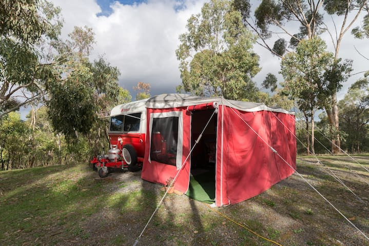 Ruby and her gorgeous red annex provides two inside living areas for guests.