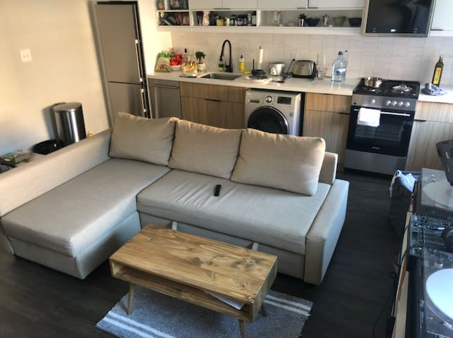 Cozy Modern Apartment in the U Street/Shaw area