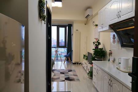 良乡大学城地铁站_小清河_北京西站_丰台科技园直达精装温馨一居室
