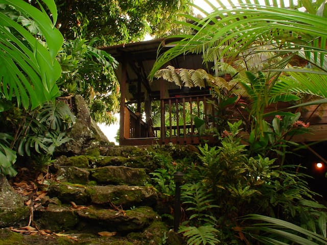 NANAINA COTTAGE. JUNGLE LOVERS DREAM
