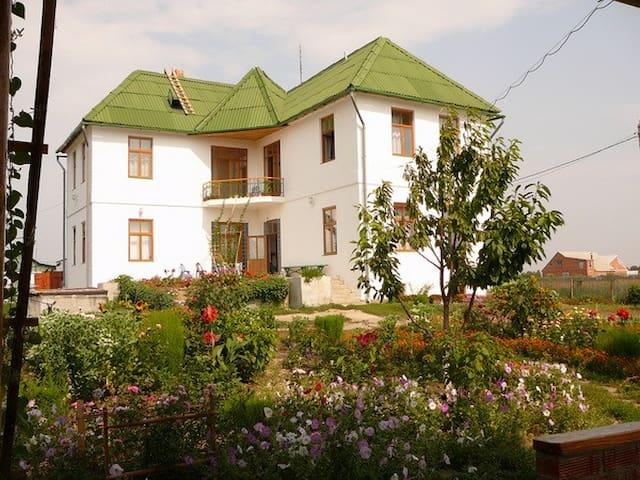 Дом с драконами (номер 2) - Eysk - Casa