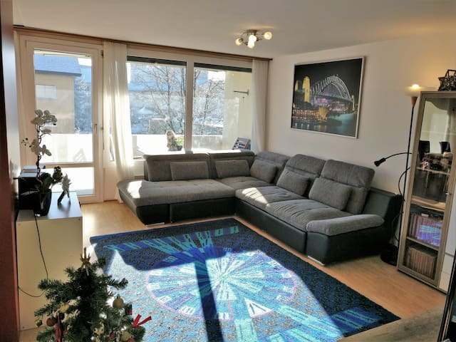 Nice apartment in the heart of CH - Sursee