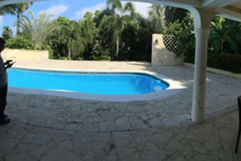 Pool and loggia overlooking palm gardens