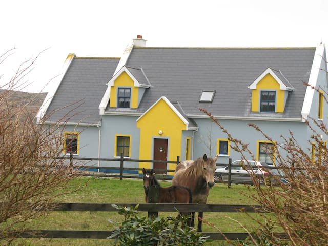 Entire house rent - Clifden - Slaapzaal