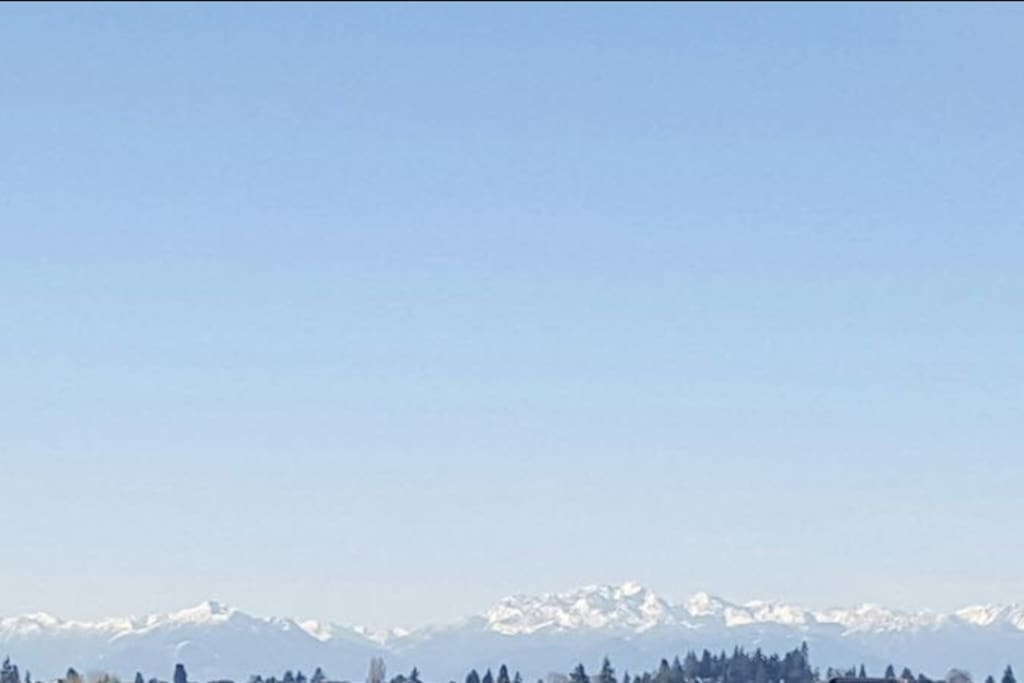 The Olympic Mountains from the rooftop deck