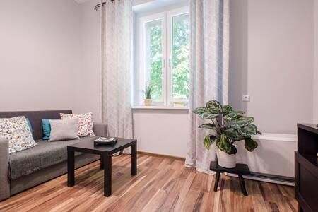 Przytulny apartament w centrum
