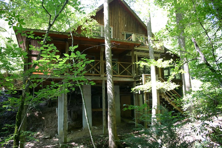 Back of cabin along the creek