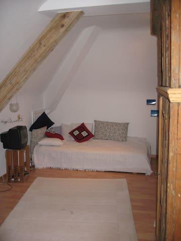 Dachwohnung mit Busverbindung nach Basel - Grenzach-Wyhlen - Apartment