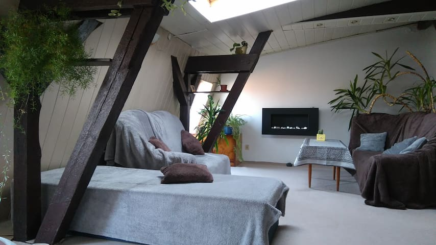 100m Loft2 apartment in Downtown ..CoolStreet6/9.. - Gdańsk - Daire