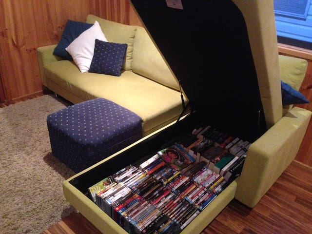 DVDs and books inside sofa