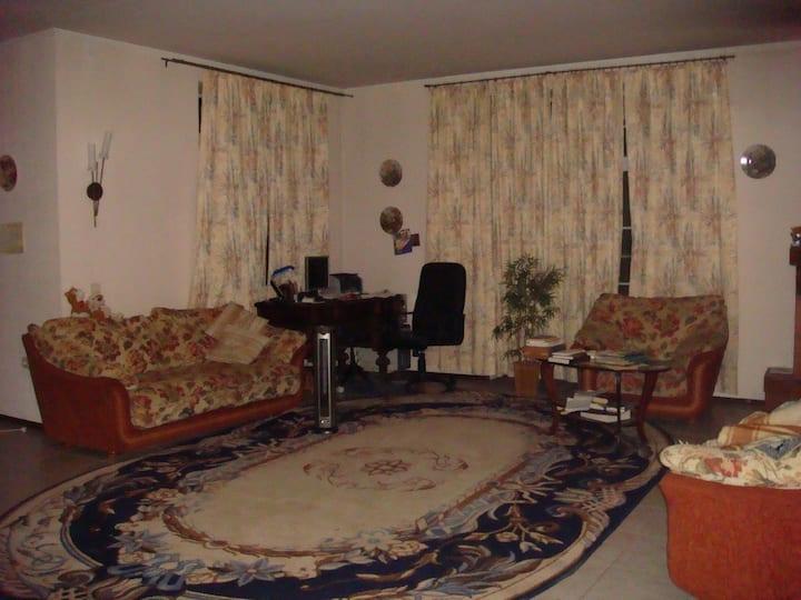 Большой уютный дом в Пушгорах
