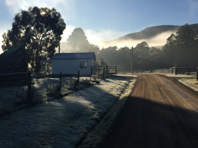 A Gorgeous Frosty Winters Morning