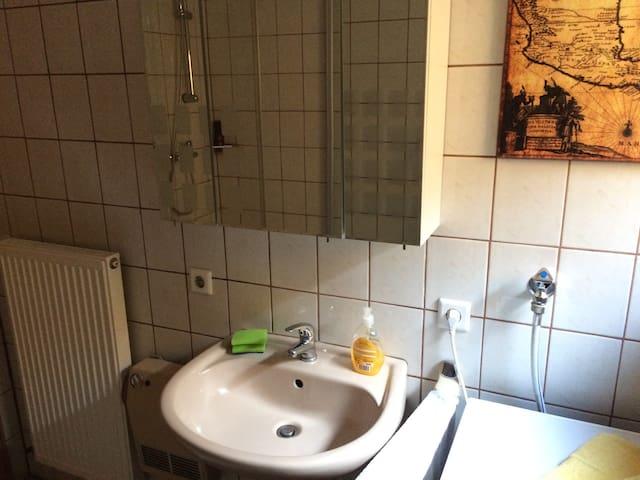 Waschbecken und Spiegelschrank. Sink with mirror cabinet
