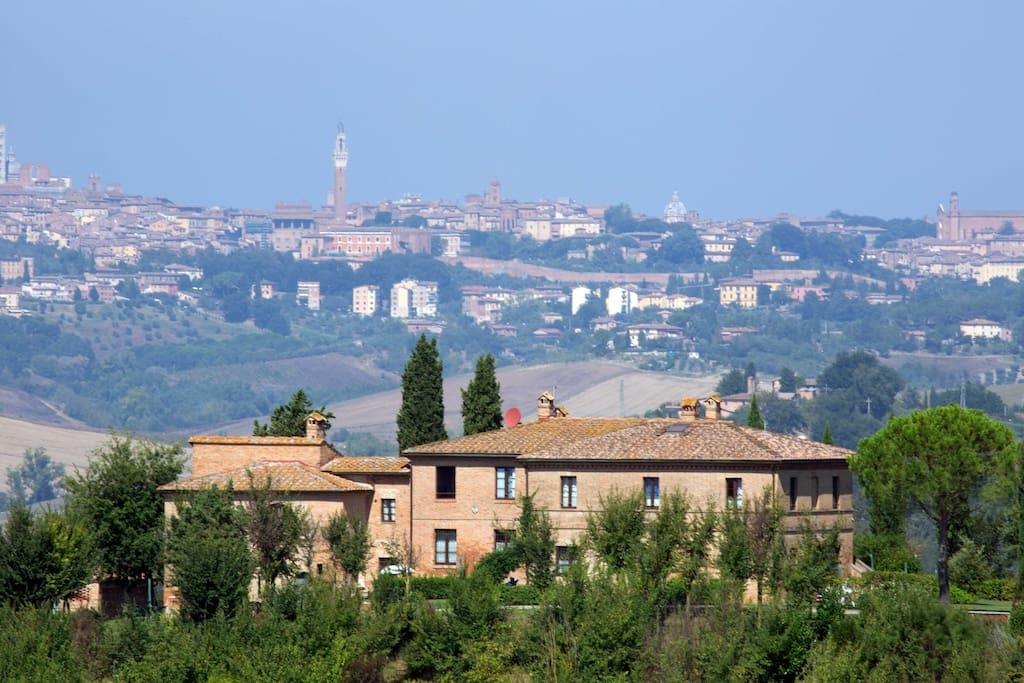 Sullo sfondo Siena