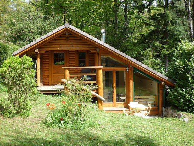 Superbe chalet en rondins, Parc Naturel du Vercors - Saint-Nizier-du-Moucherotte - Hytte (i sveitsisk stil)