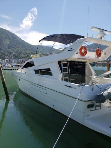 Lancha intermarine 440 full
