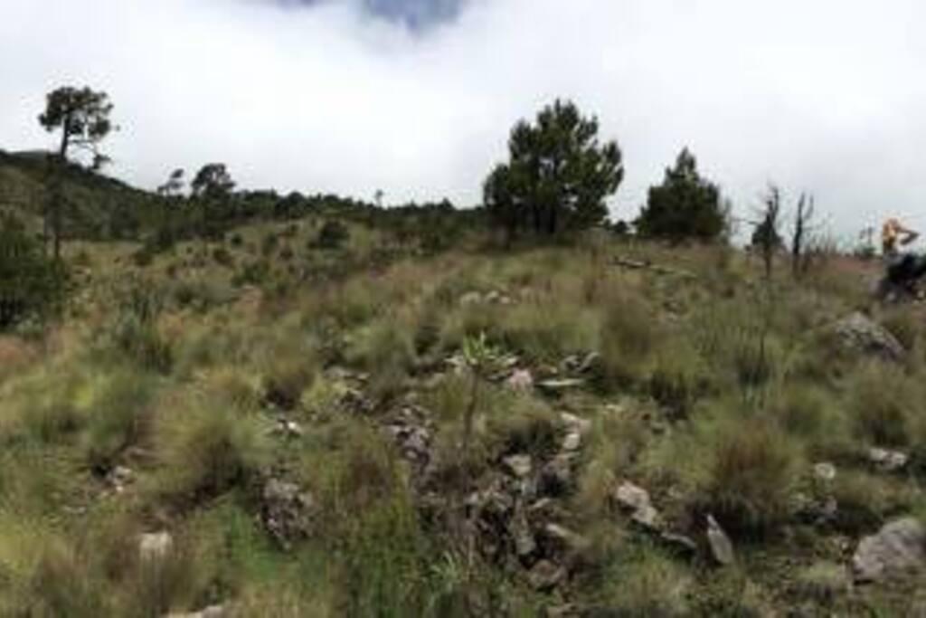 Ruta de Verde trail in Ajusco Mountain
