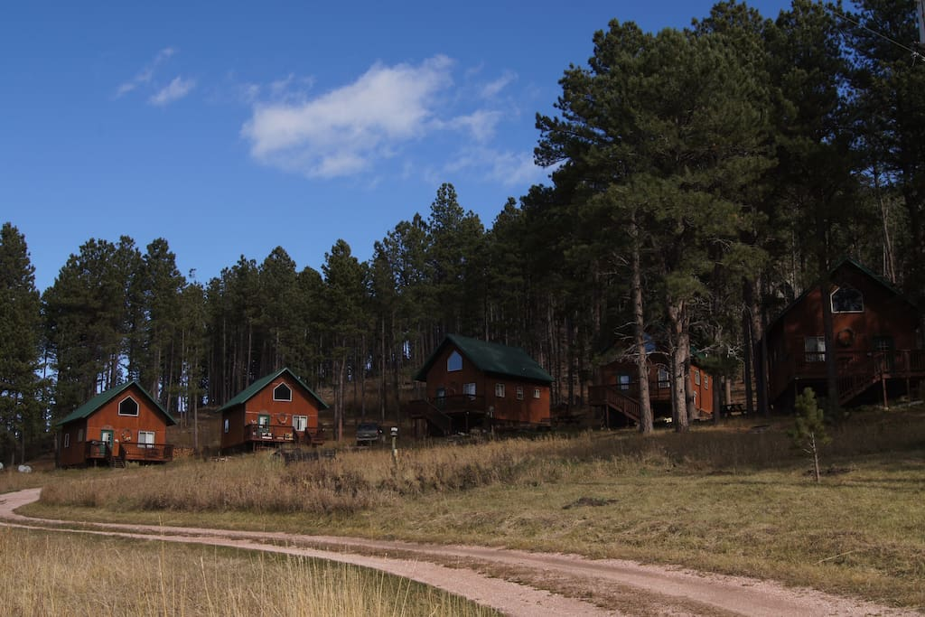 A collection of 5 rustic cabins nestled in the Black Hills of South Dakota, just outside of Custer, SD