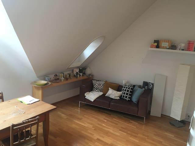 Loftähnliche kleine Wohnung in der Altstadt - Baden - Apartment
