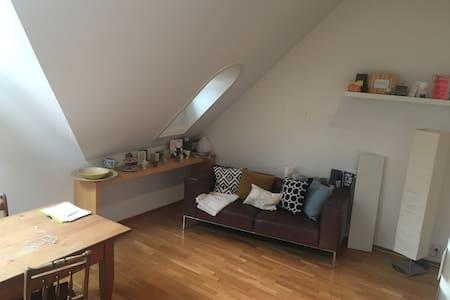 Loftähnliche kleine Wohnung in der Altstadt - บาเดน - อพาร์ทเมนท์