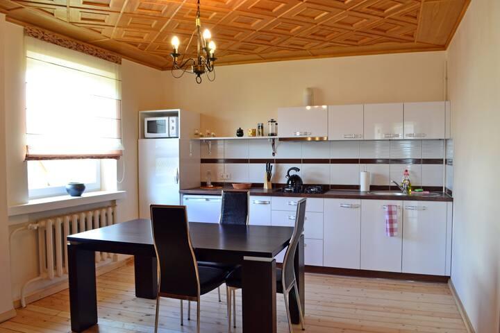 Spacious Family Apartment Siauliai-Meeting Point