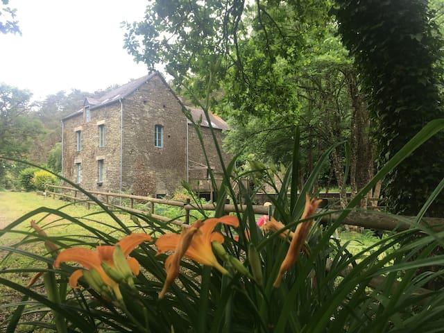 Appartement/Gites du moulin de Gueuzon