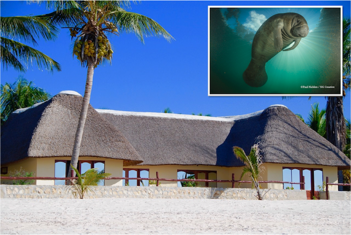 "Beach Villa ""SLEEPING DUGONG"""