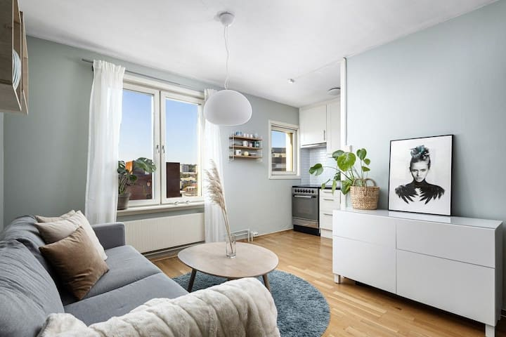 Top floor apartment with view  - Oslo city