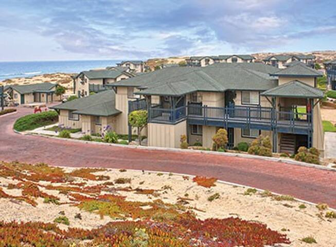Surf and Turf -  Beach Condo in Marina and US OPEN