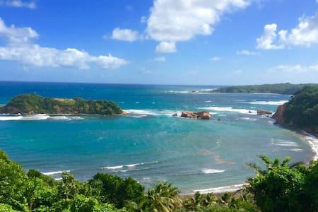 Caribbean Blue Oceanview Apartment