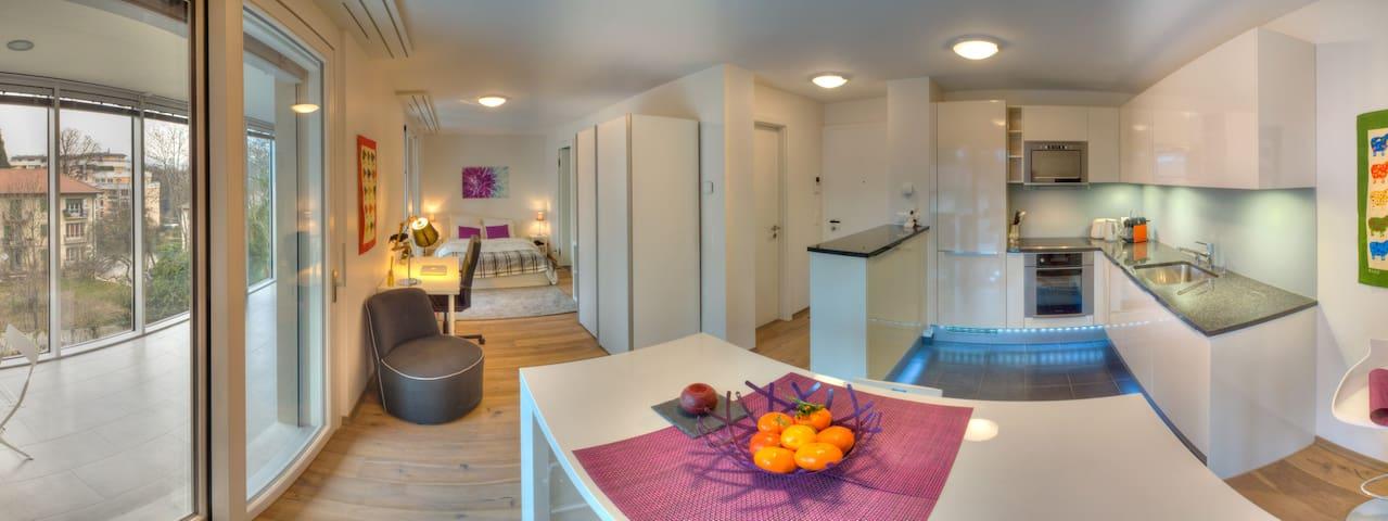 Grand studio avec jardin d'hiver fermé - Nyon - Lägenhet