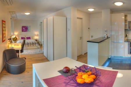 Grand studio avec jardin d'hiver fermé - Nyon - Apartamento