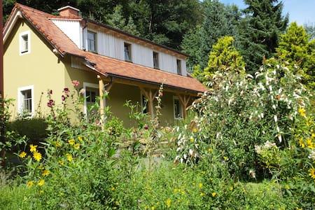 """Idyllisches Ferienhaus """"Waldhaus"""" - Rosenthal-Bielatal - Casa"""