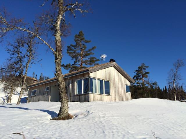 LEDIG I PÅSKEN Norefjell panoramic - Norefjell  - Kulübe