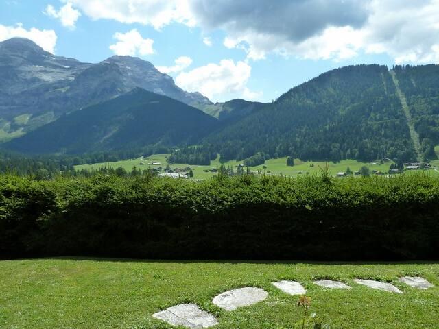 Mountain studio Les Diablerets/Glacier 3000 - Ormont-Dessus - Apartamento