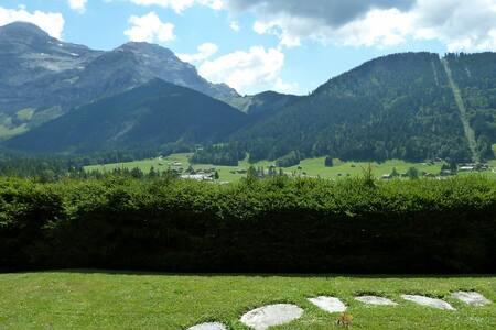 Mountain studio Les Diablerets/Glacier 3000 - Ormont-Dessus - Apartament