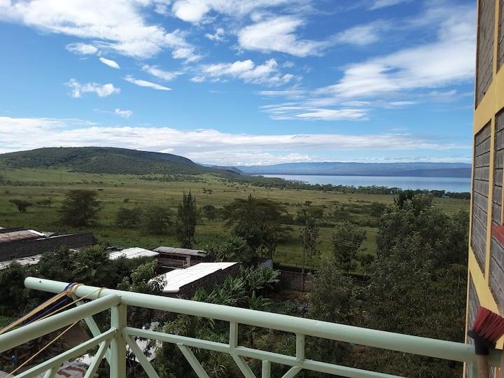 Rhino hill view