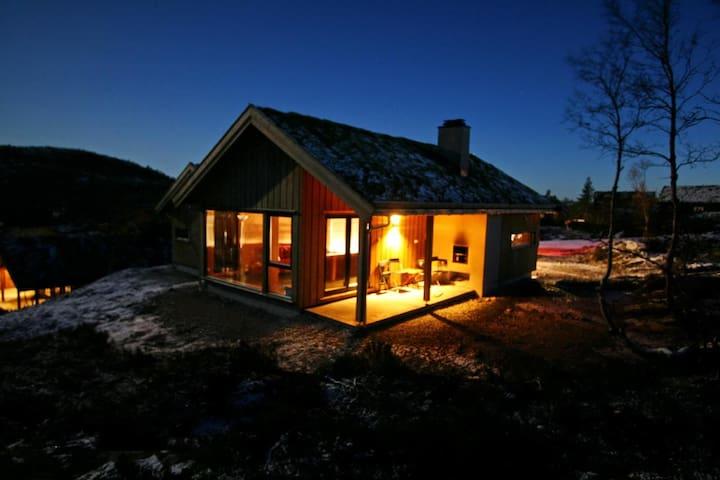619,Familiehytte til leie, Bortelid - Åseral - Бунгало