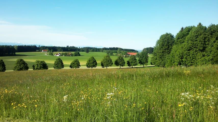 Ferienwohnung im Gutshof bei Bad Wurzach im Allgäu