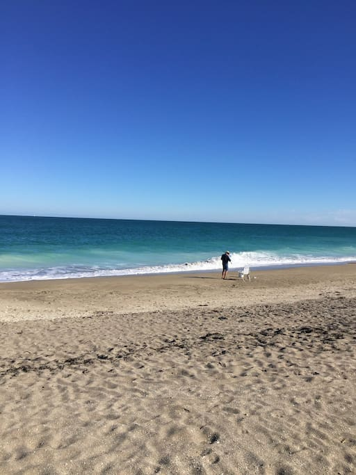 Picture yourself on a peaceful day on an uncrowded beach